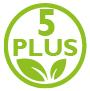 PLUS 5 - Système général, hormonal, sanguin, glycémique, lipidique